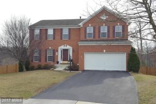 324 Morlyn Drive, Stephenson, VA 22656 (#FV9874861) :: Pearson Smith Realty