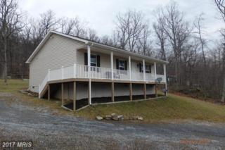 228 Hawk Trail, Winchester, VA 22602 (#FV9880449) :: LoCoMusings