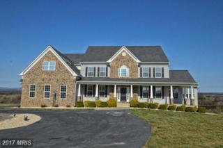 161 Newell Drive, Middletown, VA 22645 (#FV9883376) :: Pearson Smith Realty
