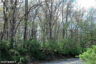 Jordan Springs Road, Winchester, VA 22602 (#FV9883869) :: LoCoMusings