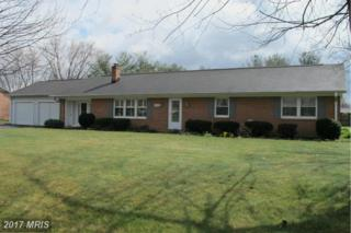 202 Wakeland Drive, Stephens City, VA 22655 (#FV9884257) :: Pearson Smith Realty