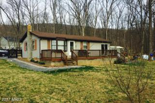 304 Shenandoah Trail, Winchester, VA 22602 (#FV9885926) :: LoCoMusings