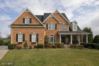 123 Carnmore Drive, Winchester, VA 22602 (#FV9886390) :: Pearson Smith Realty