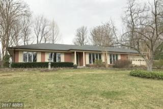 149 Stuart Drive, Winchester, VA 22602 (#FV9890204) :: LoCoMusings