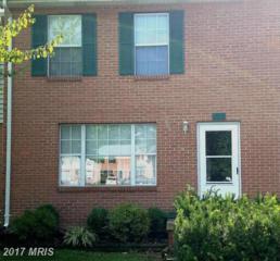 241 Buckingham Drive, Stephens City, VA 22655 (#FV9891032) :: LoCoMusings