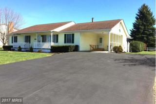 139 Accomack Circle, Stephens City, VA 22655 (#FV9900338) :: Pearson Smith Realty