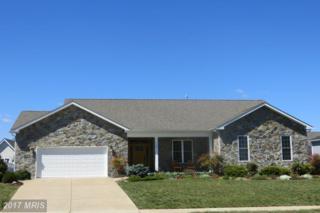 230 Summerfield Drive, Winchester, VA 22602 (#FV9903748) :: Pearson Smith Realty