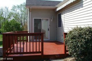 1021 Greenwood Road, Winchester, VA 22602 (#FV9915439) :: Pearson Smith Realty