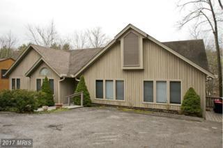633 Lakeview Drive, Cross Junction, VA 22625 (#FV9917107) :: LoCoMusings