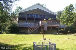 653 Lake Saint Clair Drive, Winchester, VA 22603 (#FV9924114) :: Pearson Smith Realty