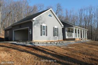 0-G Plow Run Lane, Winchester, VA 22602 (#FV9924635) :: Pearson Smith Realty