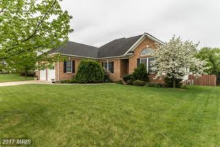 213 Dewberry Drive, Winchester, VA 22602 (#FV9924672) :: Pearson Smith Realty