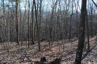LOT 3 Knob Rd, Gore, VA 22637 (#FV9924965) :: Pearson Smith Realty