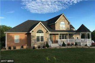 401 Buckton Road, Middletown, VA 22645 (#FV9925054) :: Pearson Smith Realty