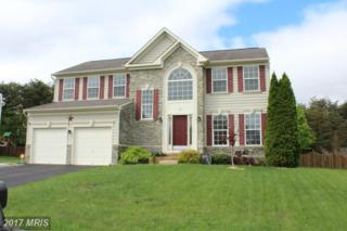 116 Teaberry Drive, Winchester, VA 22602 (#FV9927812) :: Pearson Smith Realty