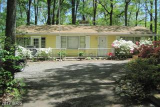102 Red Fox Trail, Winchester, VA 22602 (#FV9930930) :: Pearson Smith Realty