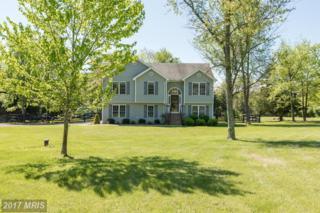 163 Jonathan Drive, Clear Brook, VA 22624 (#FV9931293) :: Pearson Smith Realty