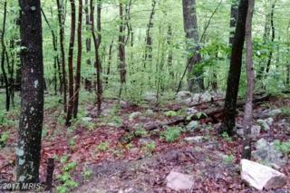 Gazelle, Winchester, VA 22602 (#FV9933005) :: Pearson Smith Realty