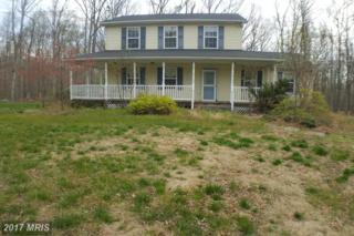 306 Mountain Falls Boulevard, Winchester, VA 22602 (#FV9934610) :: Pearson Smith Realty