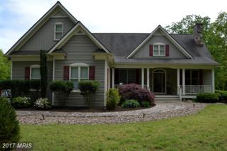 160 Laurel Ridge Court, Gore, VA 22637 (#FV9935654) :: Pearson Smith Realty