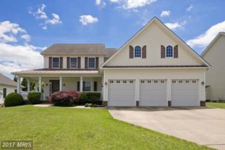 215 Dewberry Drive, Winchester, VA 22602 (#FV9936258) :: Pearson Smith Realty