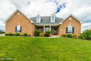 507 Brabant Drive, Stephens City, VA 22655 (#FV9941240) :: Pearson Smith Realty