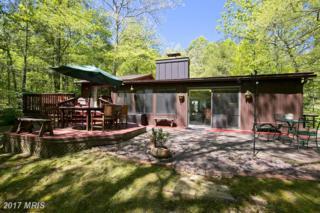 625 Lake Saint Clair Drive, Winchester, VA 22603 (#FV9941293) :: Pearson Smith Realty
