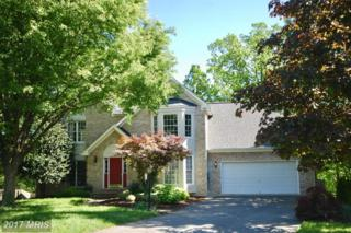 114 Winns Circle, Winchester, VA 22602 (#FV9942389) :: Pearson Smith Realty