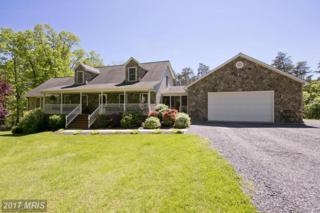 385 Logger Drive, Gore, VA 22637 (#FV9942894) :: Pearson Smith Realty