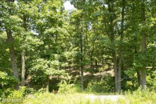 3 Huttle Road, Middletown, VA 22645 (#FV9945475) :: Pearson Smith Realty