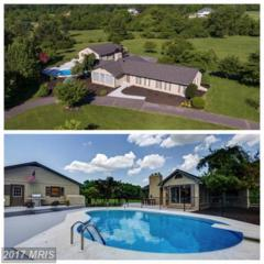 269 Apple View Drive, Clear Brook, VA 22624 (#FV9945716) :: Pearson Smith Realty