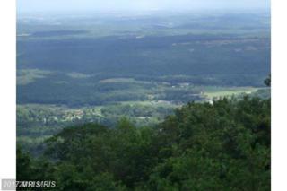 156 Bobcat Trail, Winchester, VA 22603 (#FV9947877) :: Pearson Smith Realty