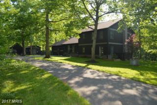 511 Fishel Road, Winchester, VA 22602 (#FV9951137) :: Pearson Smith Realty