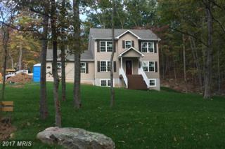 Hawk Trail, Winchester, VA 22602 (#FV9953597) :: Pearson Smith Realty