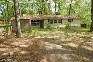 103 Gannentaha Trail, Winchester, VA 22602 (#FV9954799) :: Pearson Smith Realty