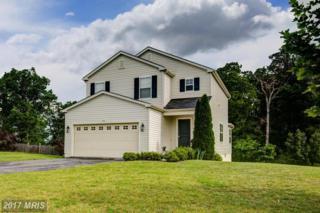 105 Dollie Mae Lane, Stephens City, VA 22655 (#FV9957961) :: Pearson Smith Realty