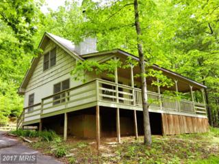 1076 Lakeview Drive, Cross Junction, VA 22625 (#FV9958545) :: Pearson Smith Realty