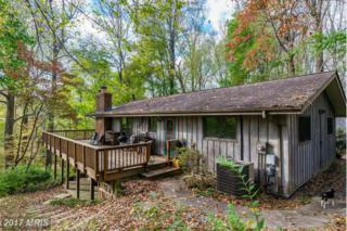 1025 Millwood Road, Great Falls, VA 22066 (#FX9800422) :: Pearson Smith Realty