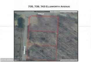 735 Ellsworth Avenue, Great Falls, VA 22066 (#FX9817938) :: Pearson Smith Realty