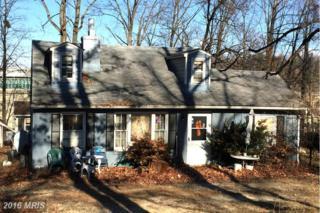 6516 Windham Avenue, Alexandria, VA 22315 (#FX9826455) :: Pearson Smith Realty