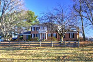 231 Seneca Road, Great Falls, VA 22066 (#FX9830940) :: Pearson Smith Realty