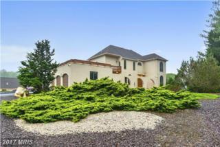 12025 Seven Hills Lane, Clifton, VA 20124 (#FX9833201) :: LoCoMusings
