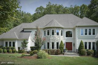 7075 Balmoral Forest Road, Clifton, VA 20124 (#FX9840678) :: LoCoMusings