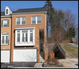 7800 Locust Leaf Lane, Alexandria, VA 22315 (#FX9841296) :: Pearson Smith Realty