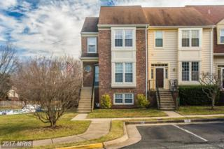 6380 Palmetto Place, Centreville, VA 20121 (#FX9842798) :: Pearson Smith Realty