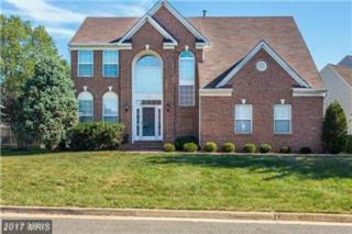 6437 Muster Court, Centreville, VA 20121 (#FX9843671) :: Pearson Smith Realty