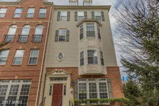 5669 Harrington Falls Lane A, Alexandria, VA 22312 (#FX9843853) :: Pearson Smith Realty