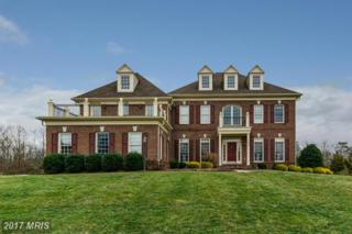 5133 Pleasant Forest Drive, Centreville, VA 20120 (#FX9848519) :: LoCoMusings