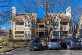6608 Jupiter Hills Circle D, Alexandria, VA 22312 (#FX9850031) :: Pearson Smith Realty