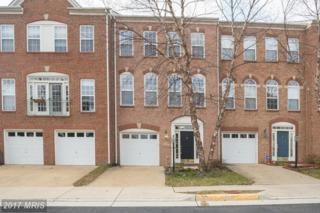 13640 Flying Squirrel Drive, Herndon, VA 20171 (#FX9850494) :: Pearson Smith Realty